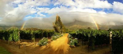 Day 122 – The pot-o-gold's in Franschhoek