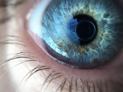 Day 249 – Eye see