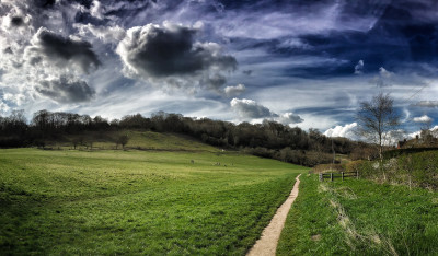 Day 185.2 – Spring field