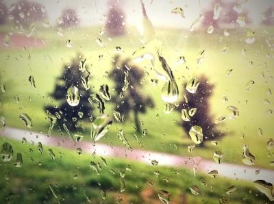 Day 262 – Stormy windows