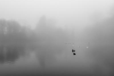 Day 151.2 – Misty start